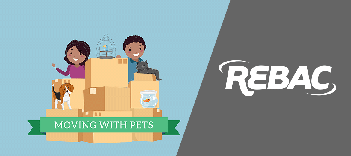moving-with-pets